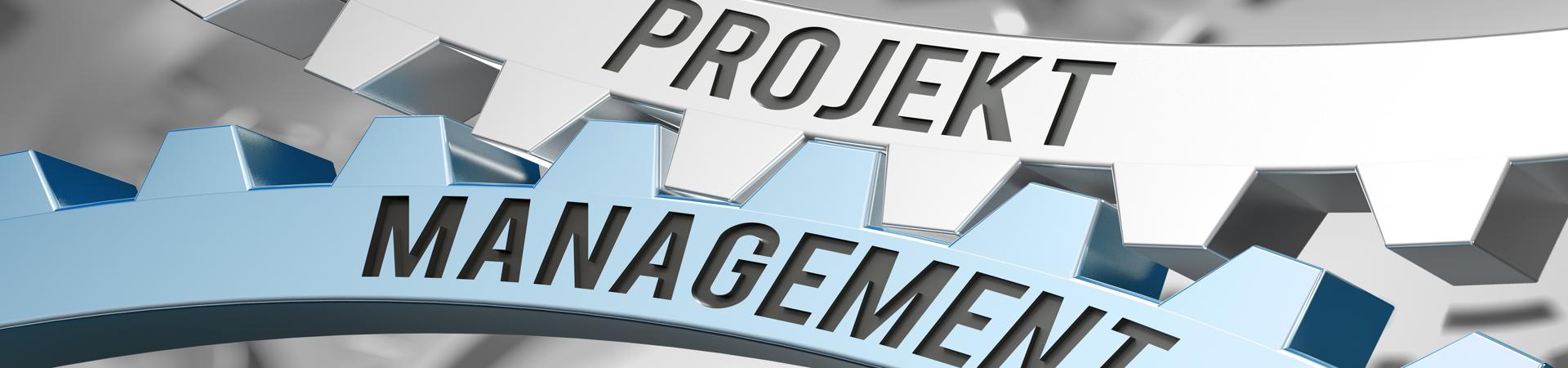 Banner Projektmanagement 1920x450px | SEGNO