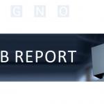 Bild WEB Report 596x334px | SEGNO